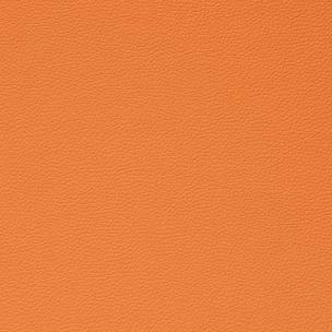 Reef orange