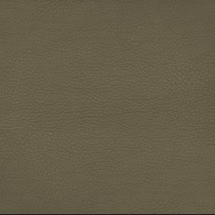 Botticelli 1134