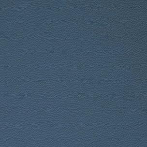 Reef blue
