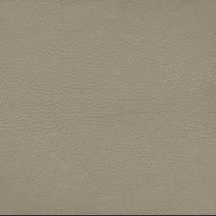 Botticelli 1132
